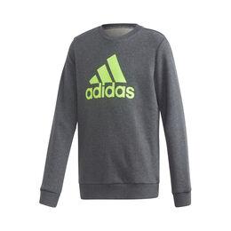 Crew Sweatshirt Boys